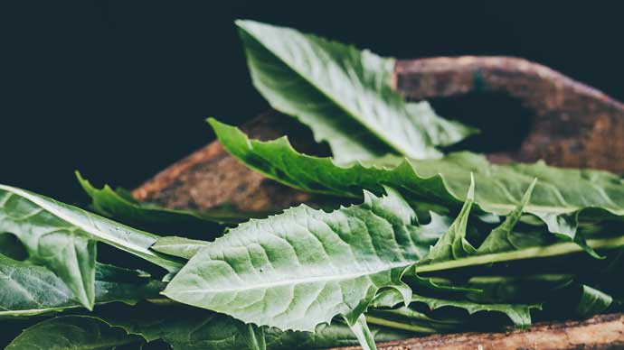 Leafy Greens to Love Your Liver