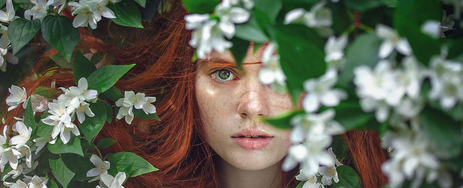 4 plante medicinale pentru parul tau