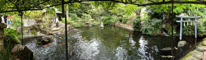 A koi pond within the shrine