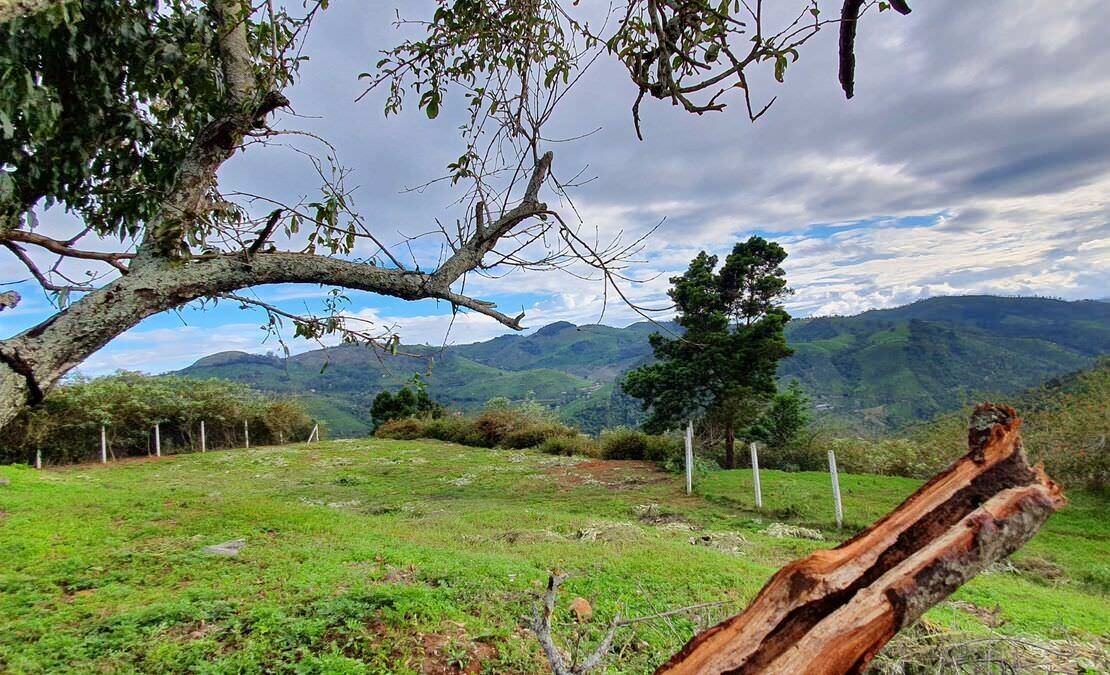 Balaclava house being at a high plateau, enjoys the best of urban Coonoor and the reclusive villages