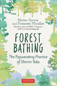 Forest bathing image