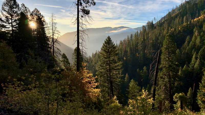 Morning sun at Chips Creek Canyon