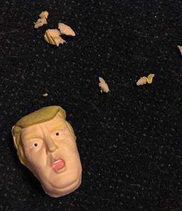 TrumpHead.jpg