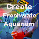Freshwater Aquarium Secrets