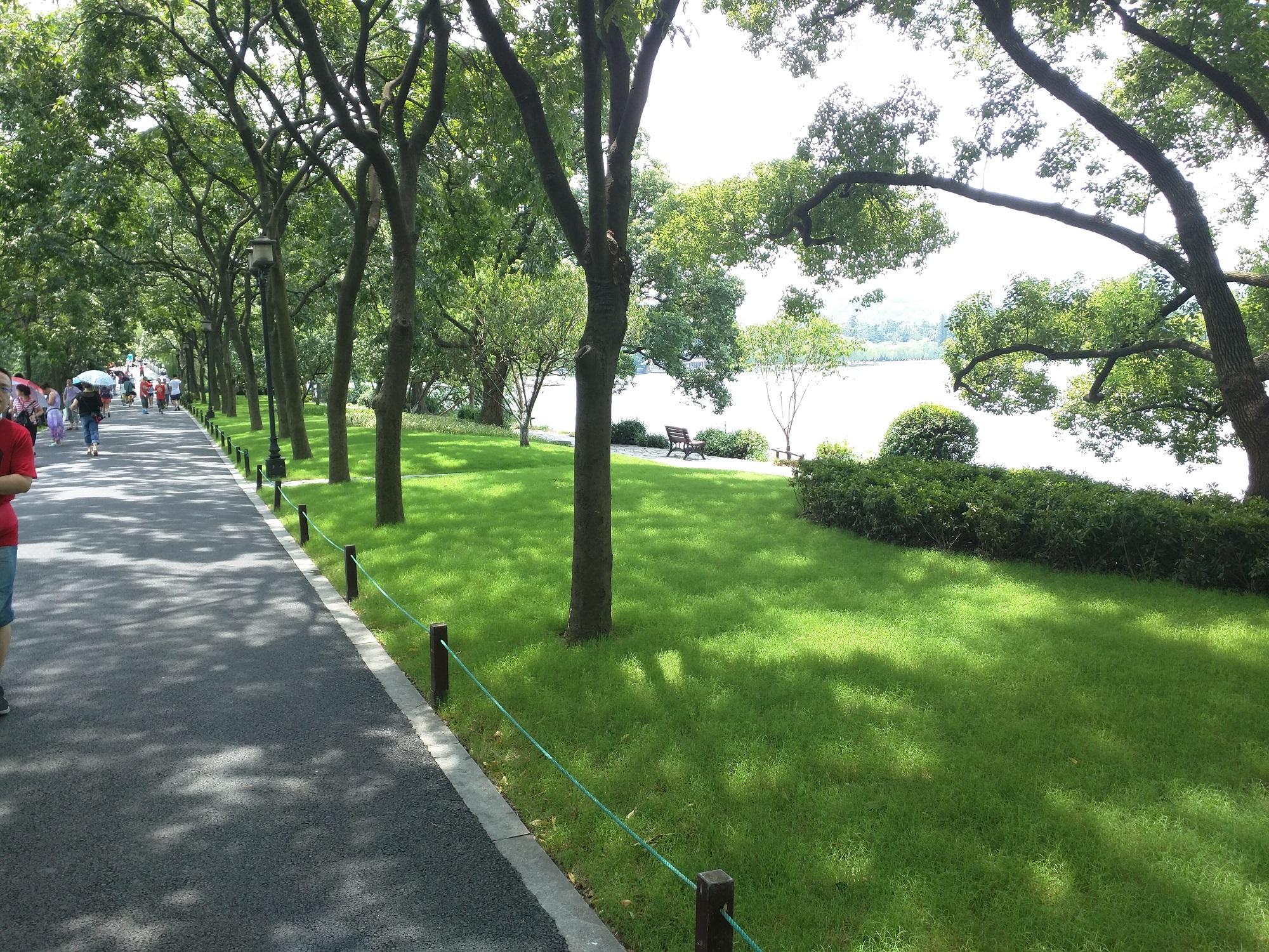 Der Sommer in HangZhou ist voller Sonnenschein.