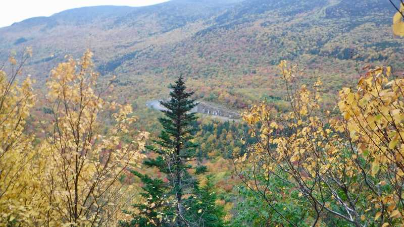 View of Pinkham Notch during climb up Wildcat Mountain