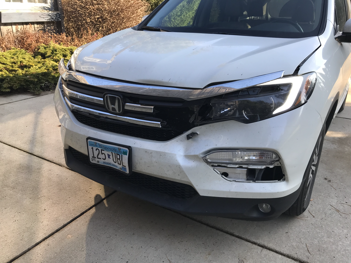 Honda Damage after Deer Strike