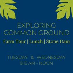 Exploring Common Ground: A Regenerative Farm Tour, Farm-to-Table Picnic & Stone Dam Excursion
