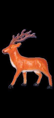 Brown Reindeer photo