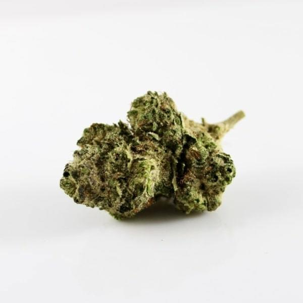 The Most Popular Cannabis Articles