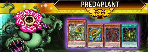 Predaplant Breakdown | YuGiOh! Duel Links Meta