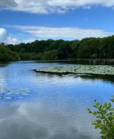 Breary Marsh
