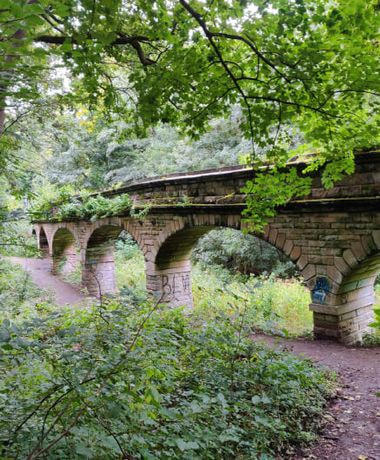 Viaduct with seven arches surrounded by trees and green undergrowth