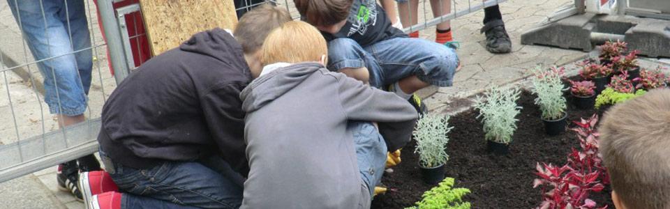 Foto: Initiative Nauwieser Viertel. Baumscheiben-Pflanzaktion.