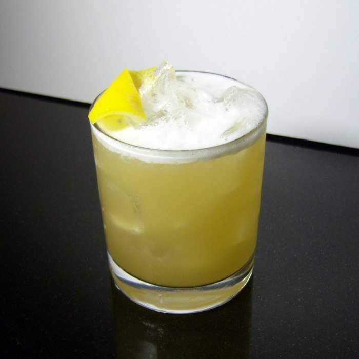 Boston Sour Cocktail