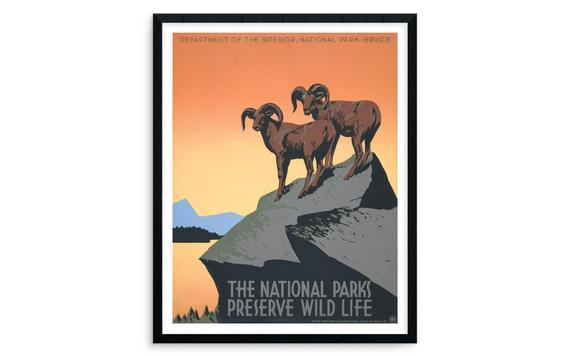 National Parks Preserve Wild Life