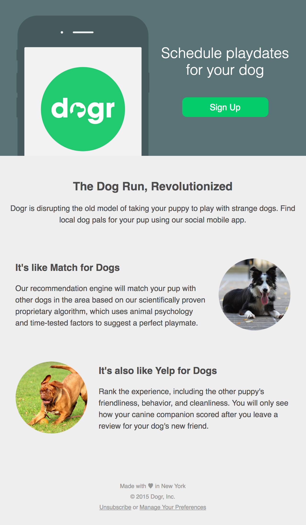 Dogr email