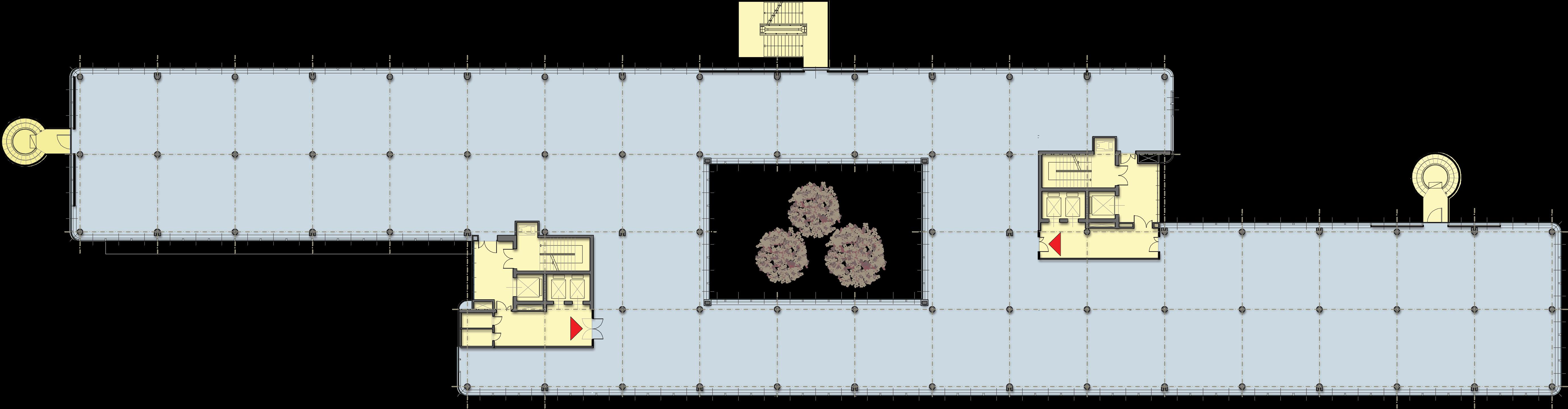 Planimetria piano tipo