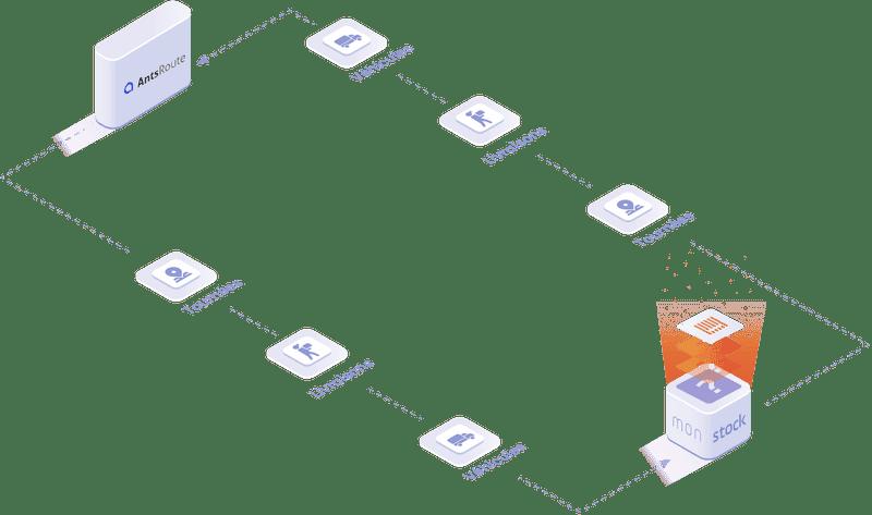 Objets et données manipulées dans l'integration AntsRoute: livraisons, tournées, véhicules, etc.