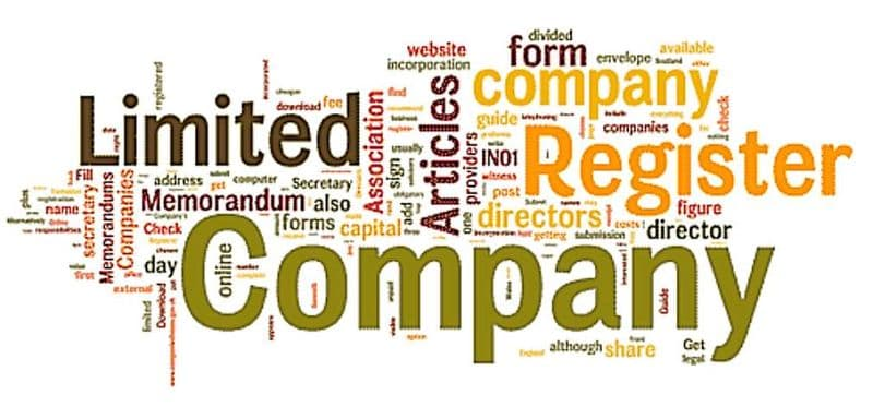 What kind of company is best for you?
