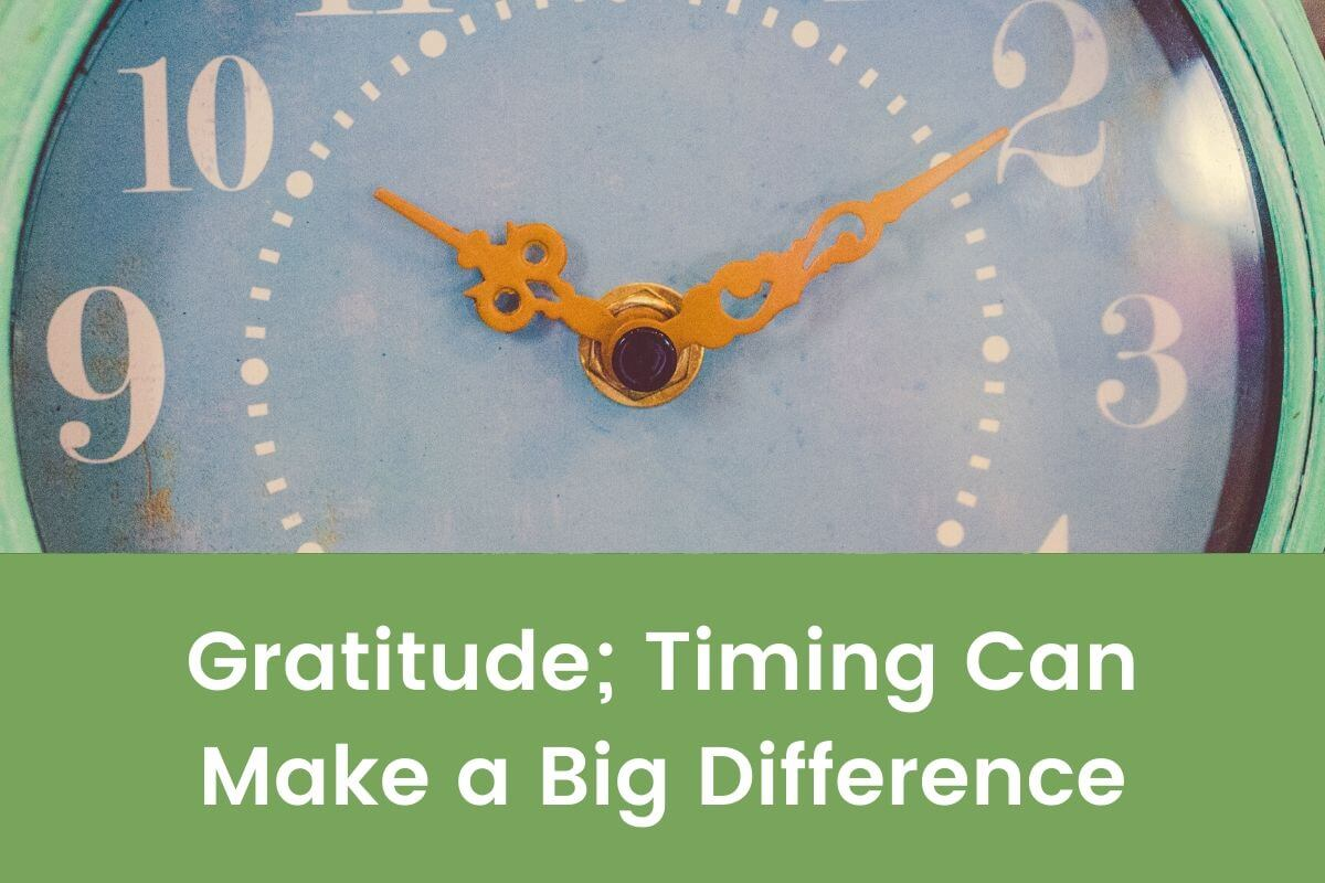 Gratitude; Timing Can Make a Big Difference- Featured Shot