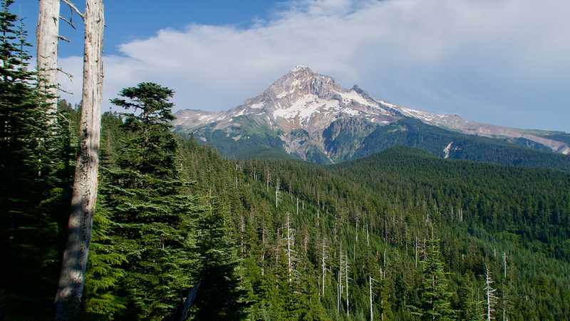 A closer view of Mt. Hood