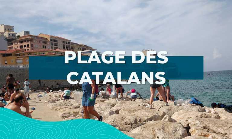 Image principal Dépollution des Catalans (#44)