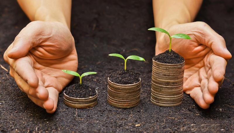 Imagem em destaque para o artigo: Bioeconomia: você conhece essa tendência mundial?