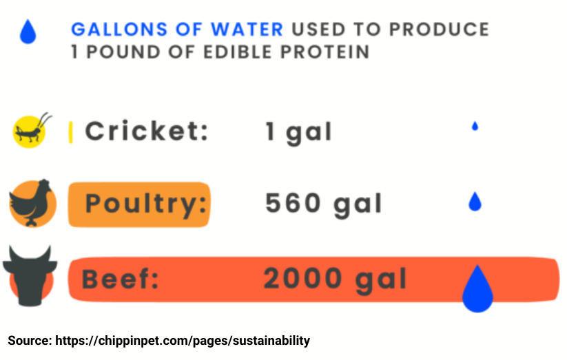 Crippin Gallons of Water Used to Produce 1 Pound of Edible Protein Infographic