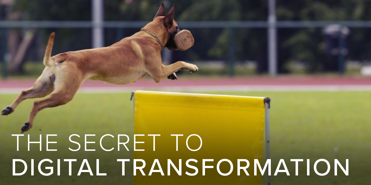 The Secret to Digital Transformation
