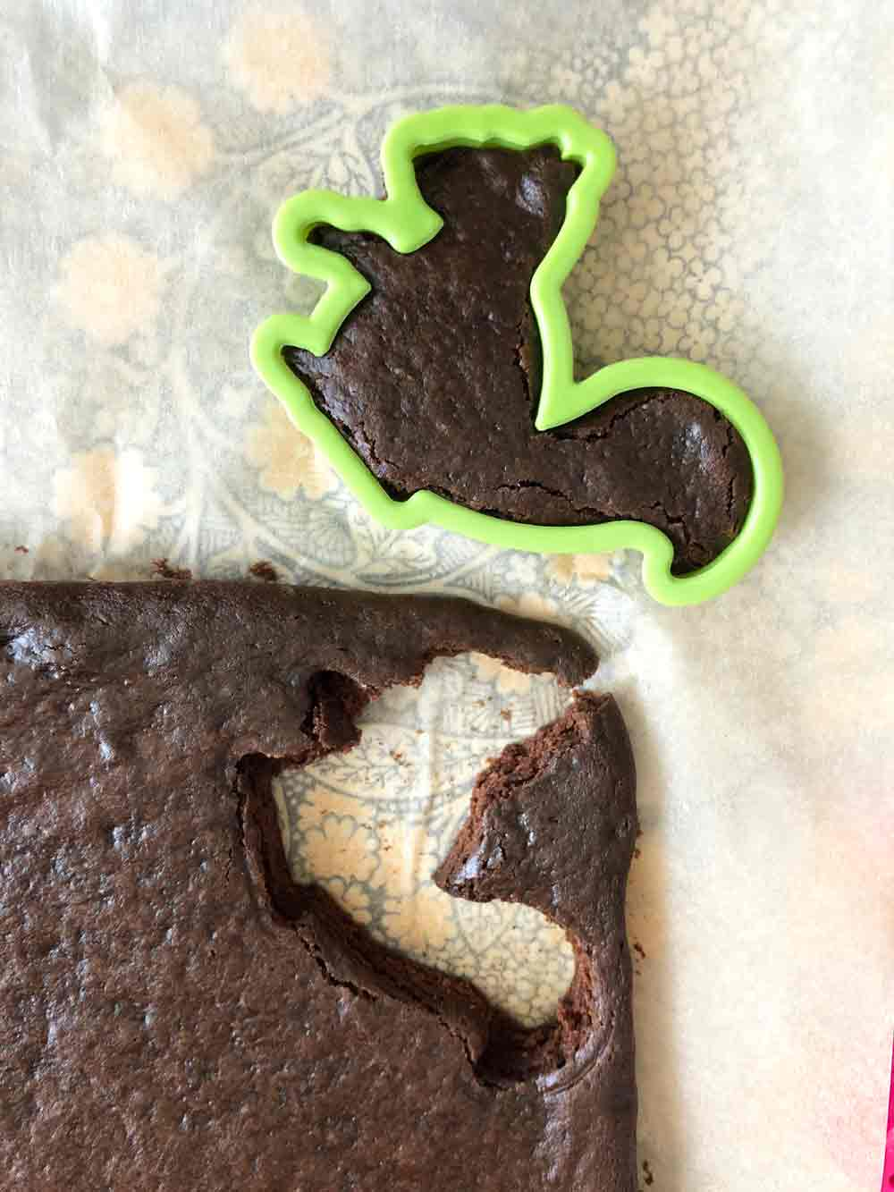 Vegan Squirrel Brownies