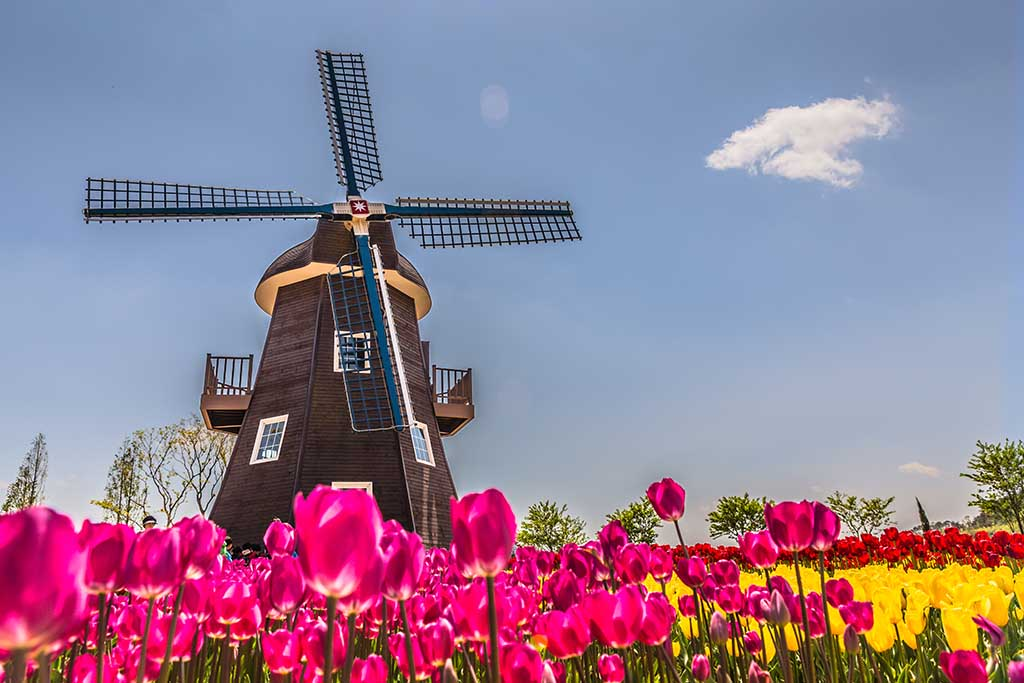Traditional Dutch windmill in the Netherlands