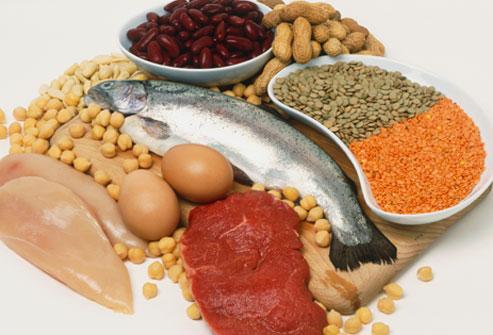 il ruolo delle proteine nel ciclismo