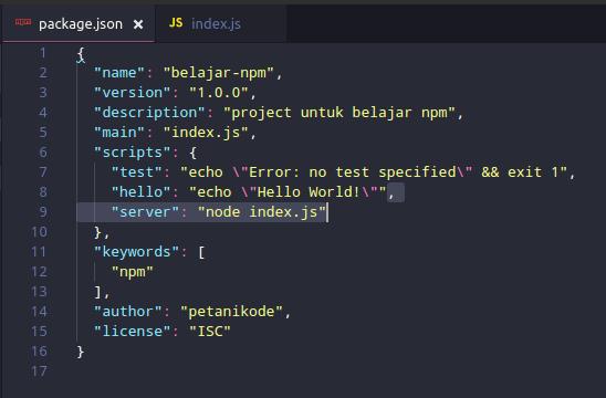 Nodejs Server Script