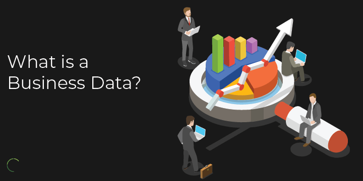 what is a business data?