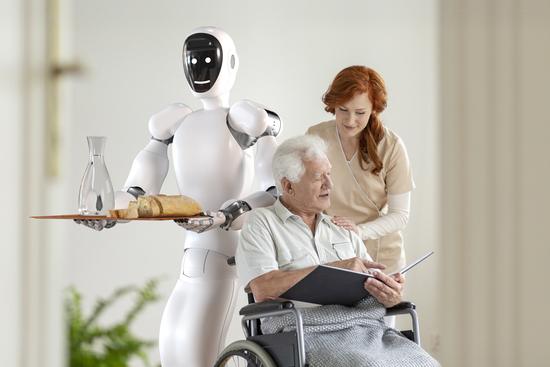 Eve Humanoid Robot