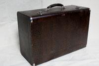 201K23 - Crocodile Case