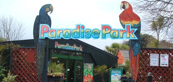 paradise park nature park hayle penzance