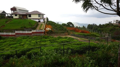Plot 56 at Serenitea for sale image