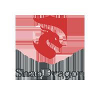 SnapDragon Monitoring Ltd