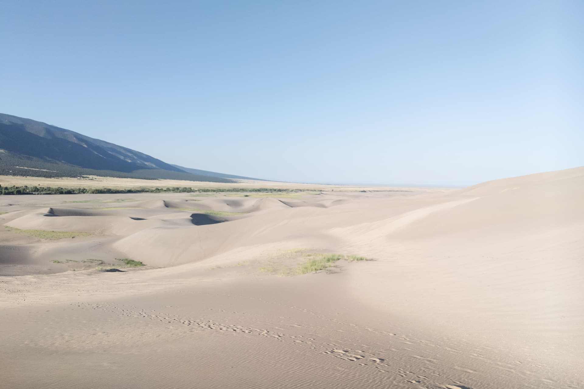 Looking across a field of sand dunes. In the distance the dunes give way to desert scrubland, and then eventually to juniper-covered mountains.
