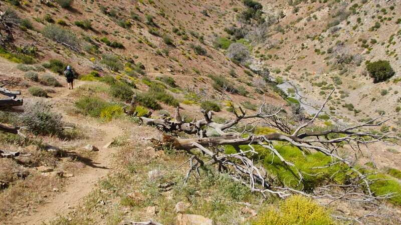 Descending into Tylerhorse Canyon