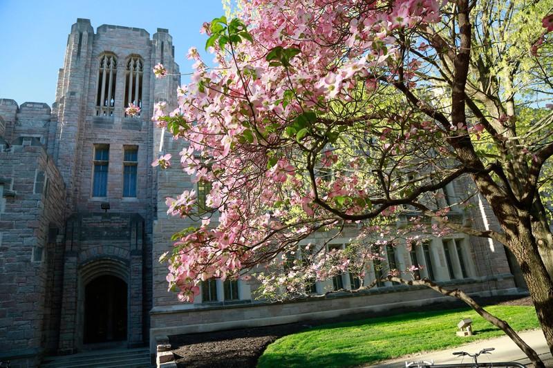 Spring time in front of Jordan Hall at Butler University