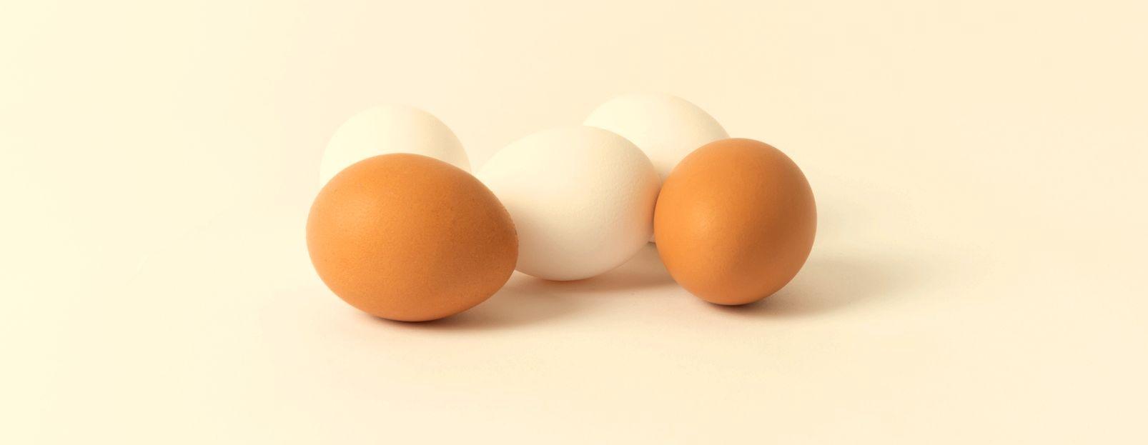 ¿Cuáles son los alimentos constructores y qué función cumplen? - Featured image