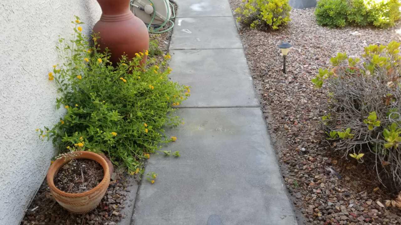 Closeup shot of walkway concrete before restoration