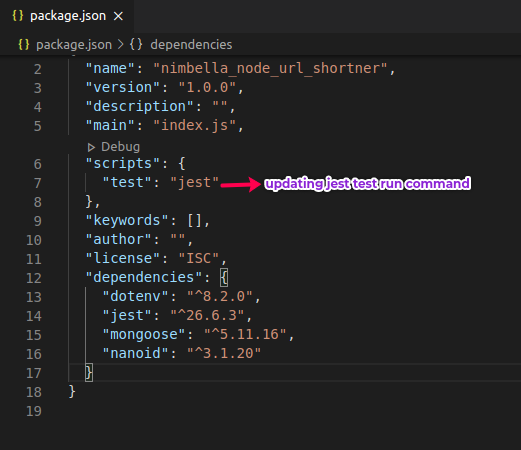 Package.json after updating test Run command