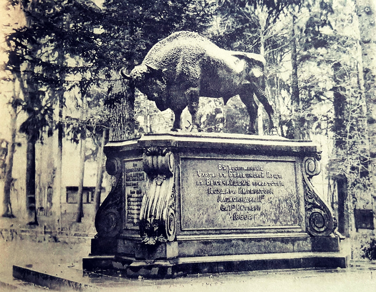 A cast-iron figure of a bison, installed in memory of the hunting of Emperor Alexander II. 1860 From the book 'The Royal Hunt in Belovezhskaya Pushcha. Pages of History'