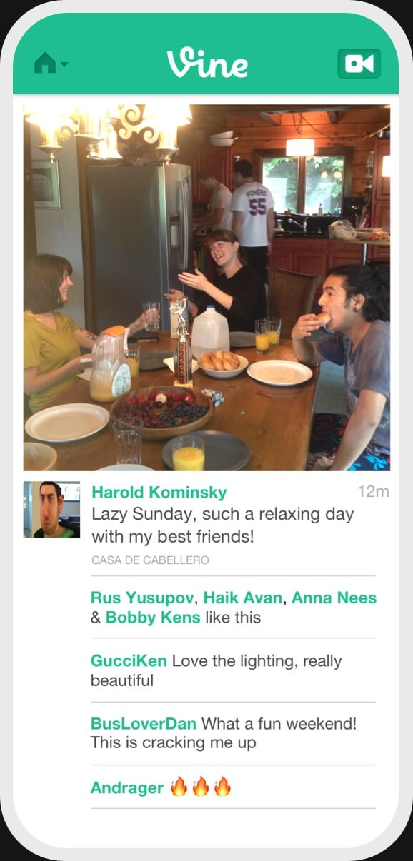Vine version 1 post screen image