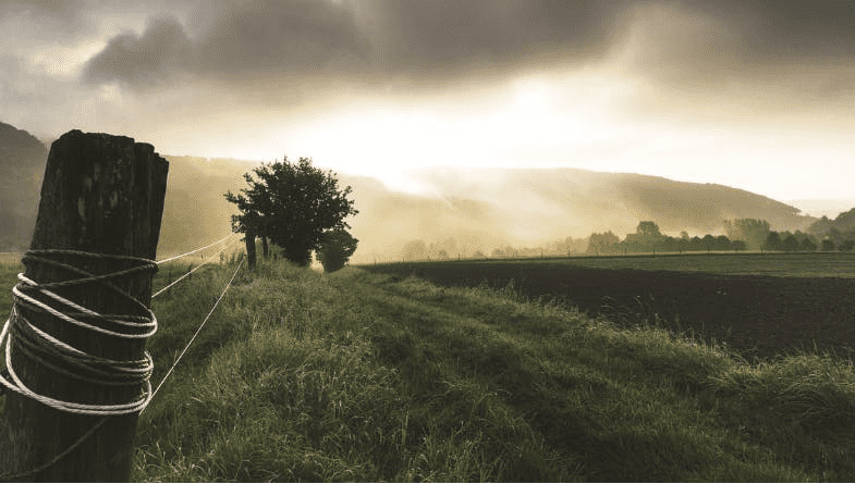 Sun comes through clouds above hills and fields, past wooden fence. Trees and grass and bushes are pictured in agriculture environment #kpi