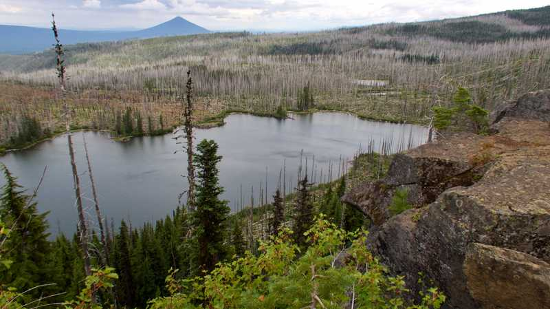 A view of Wasco Lake